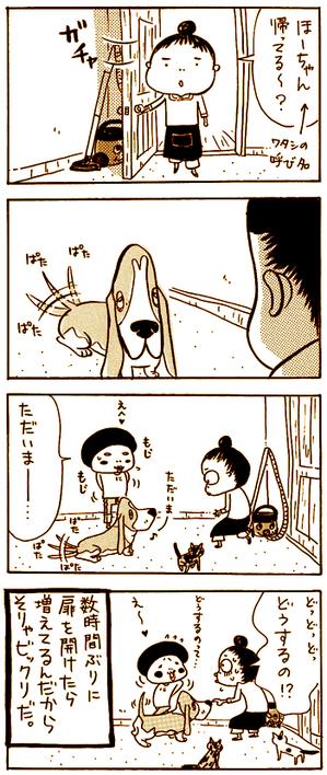 Higuchineko38