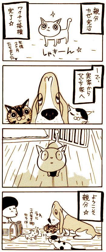Oyabun11