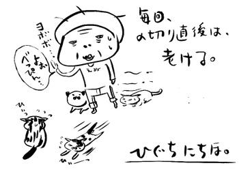 Rakugakineko20111027
