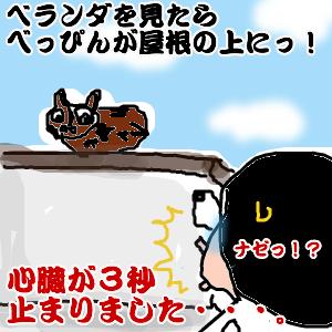 Cocolog_oekaki_2010_05_18_22_36