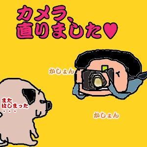 Cocolog_oekaki_2010_11_07_23_11