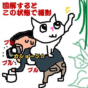 Cocolog_oekaki_2011_02_03_18_52