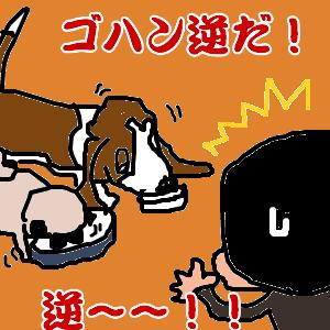 Cocolog_oekaki_2011_02_13_16_28
