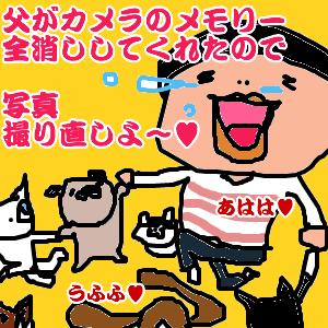 Cocolog_oekaki_2011_05_28_18_12