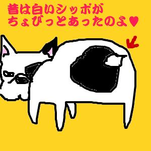 Cocolog_oekaki_2011_05_31_22_36
